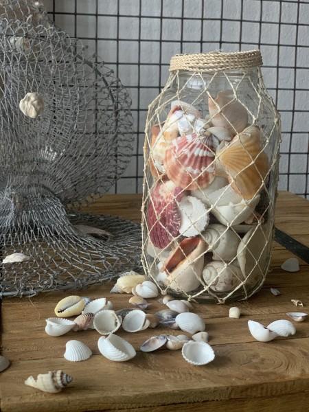 Muscheln im Glas