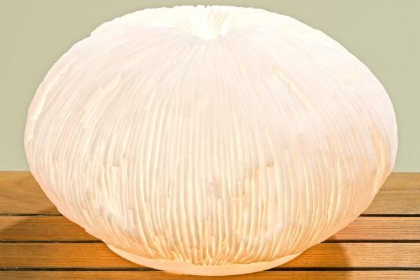 Lampe Koralle Durchmesser 30cm aus Kunstharz in weiß